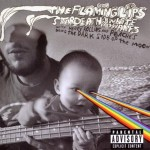 Flaming Lips et al. - The Dark Side of the Moon